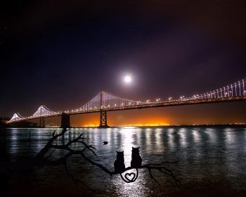 San Francisco Free Hotel Discounts and Travel Coupons for San Francisco Hotels, Rental Cars, Amusement Parks, Restaurants, Shopping, Nightlife, Activities and More!